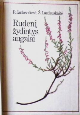 rudeni-zydintys-augalai
