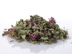 Arbata-vasara-citrinine-karzole-dobilu-ziedai-Zolynu-namai