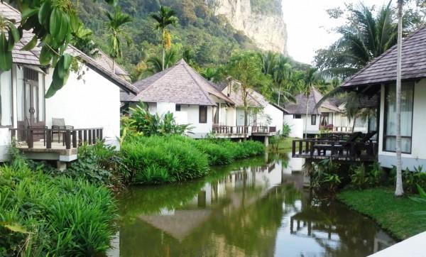 pandanais-apsodintas-peace-laguna
