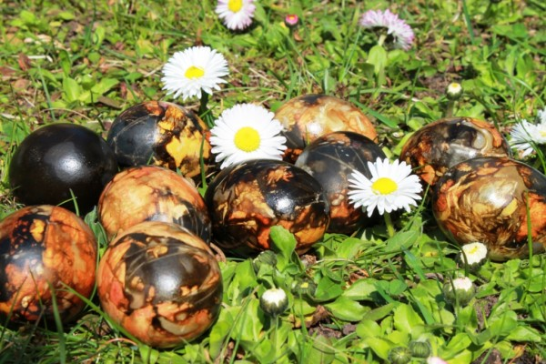 Alksnio-zievemis-marginti-marguciai- ler-Easter-eggs-dyed-with-adler-bark