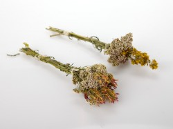 dziovinti-augalai-puokstese-small-dried-flowers-bouquet-for-gift-decorating