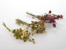 dziovintu-lauko-geliu-puokstele-stalo-dovanu-dekoravimui-small-dried-flowers-bouquet-for-gift-decorating