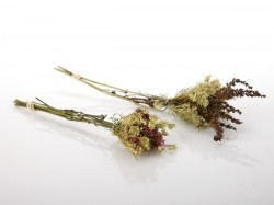 dziovintu-morku-puokstes-dovanu-puosybai-small-dried-flowers-bouquet-for-gift-decorating