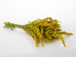 geltoni-ziedai-puokstele-rykstene-puozybai-small-dried-flowers-bouquet-for-gift-decorating
