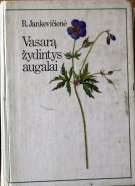 vasara-zydintys-augalai