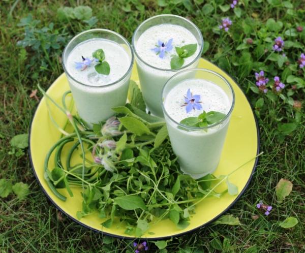 zliuges-cesnako-agurkles-kefyro-kokteilis
