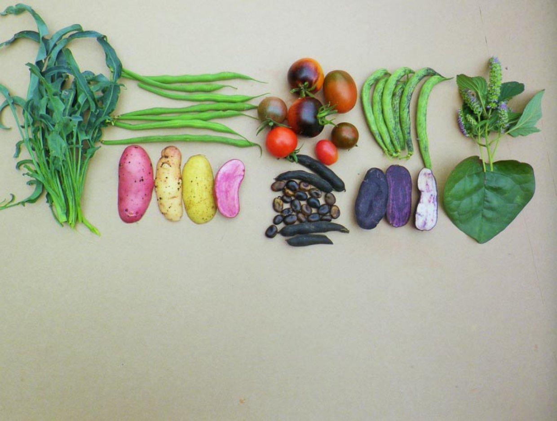 Retos daržovės